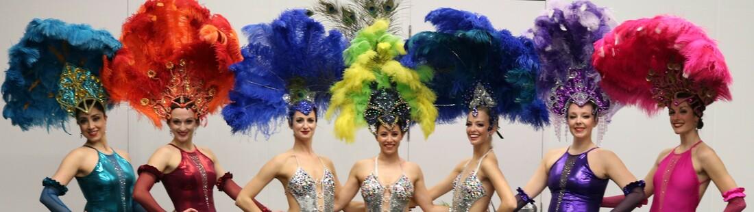 costume plumes , Productions Plumeria , spectacles de danse